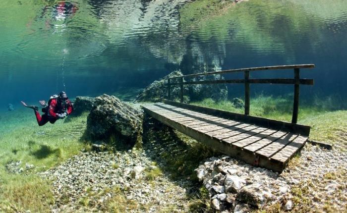 Тонущее озеро. Красивые фотографии