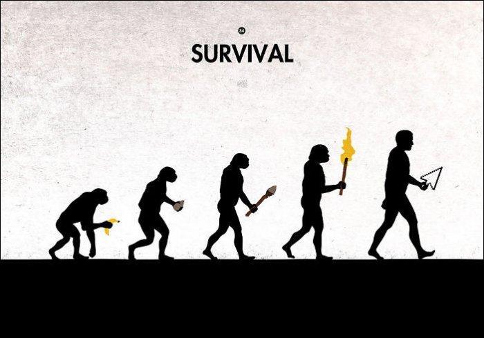 Эволюция в картинках. Картинка дня