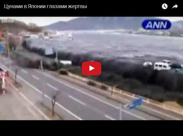 Япония: цунами глазами жертвы