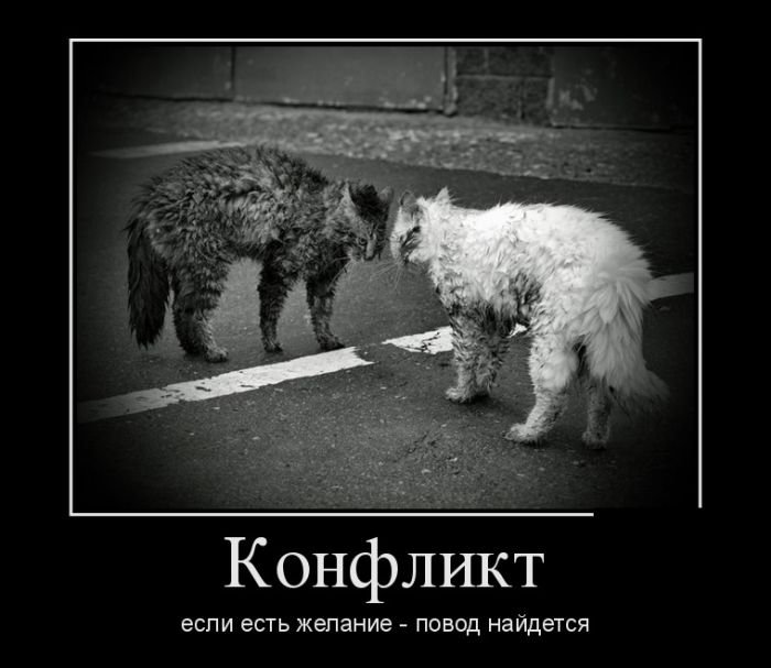 Пачка свежих прикольных демотиваторов Пост хорошего настроения