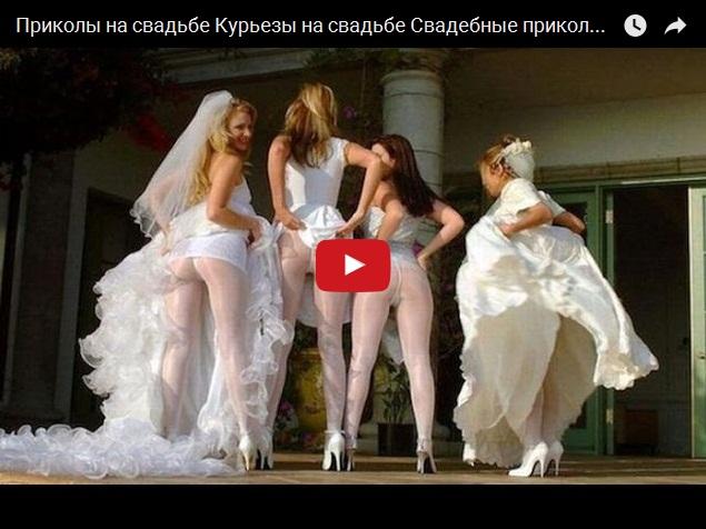 Веселая подборка свадебных курьезов