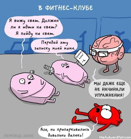 Комиксы про говорящие ограны. Приколы про организм