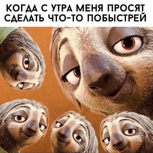 Прикольные мемы. Картинки с надписями