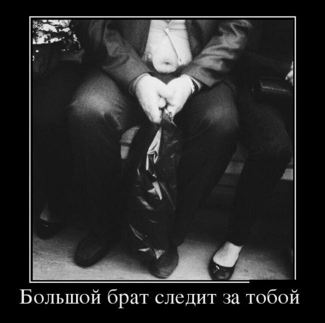 Лучшие демотиваторы мая 2016. Улётная подборка