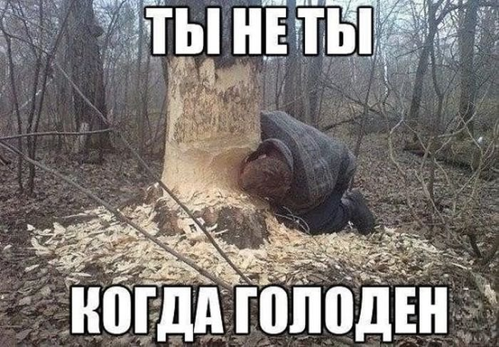 http://xaxa-net.ru/uploads/posts/2016-05/1462180925_podborka-prikolov-1_xaxa-net.ru.jpg