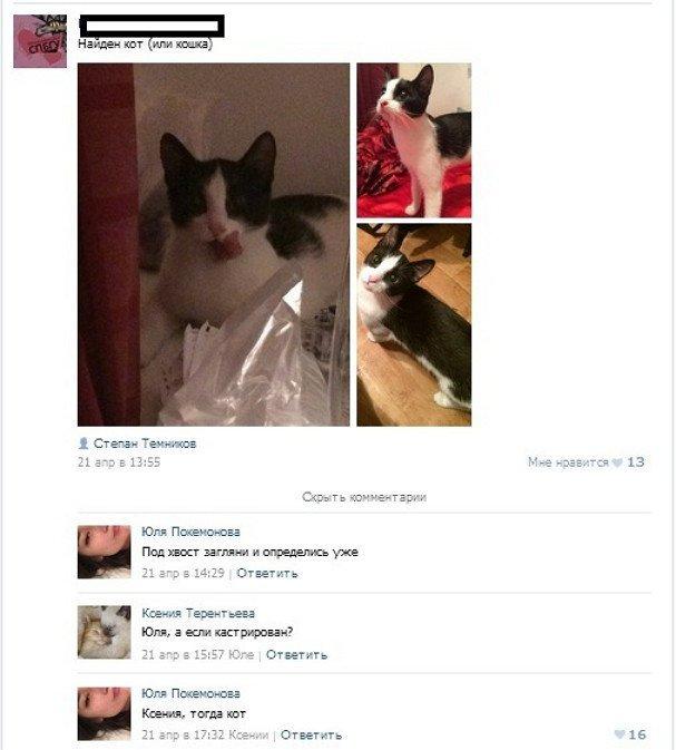 Убойные комментарии и отзывы из интернетов