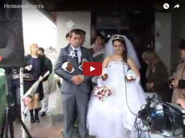 Незваный гость на свадьбе свалился на голову