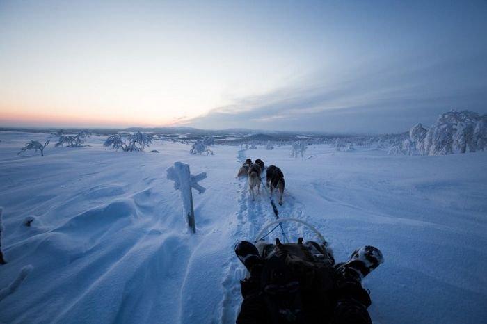 Отшельница на севере Финляндии. Интересные фото