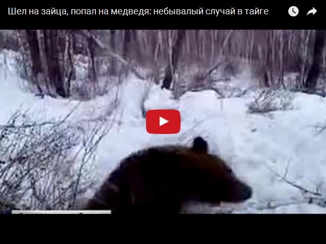 Случай в тайге - шел охотиться на зайца, а попал под медведя