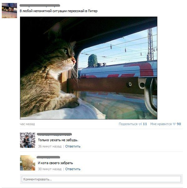Ржачная переписка из социальных сетей
