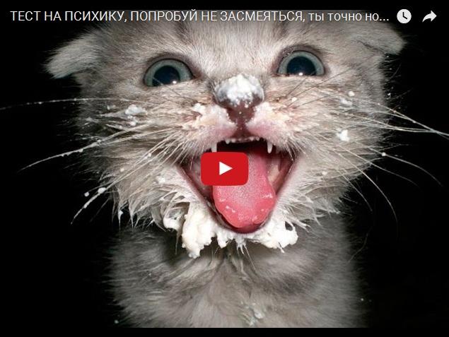 Тест на психику - свежая подборка смешного видео