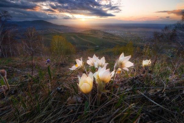 Красивые картинки России
