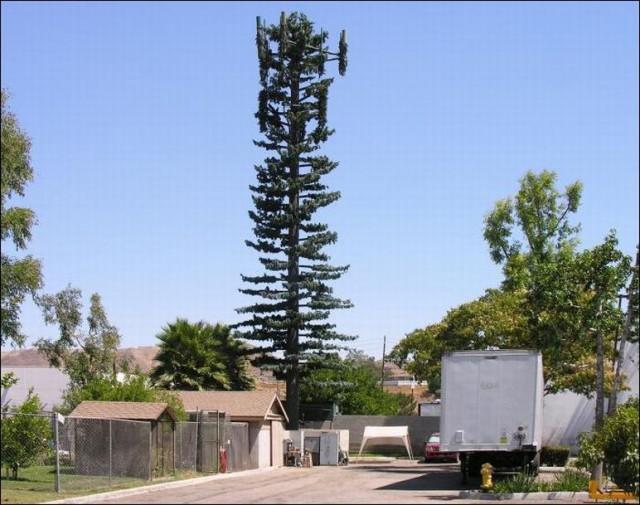 Как маскируют вышки сотовой связи