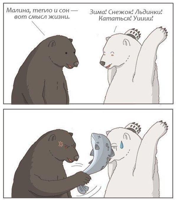 Смешные картинки расизм