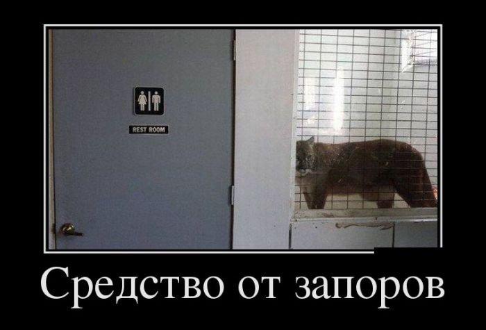 Прикольные русские демотиваторы. Весёлая подборка картинок