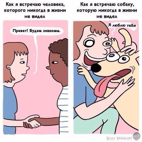 Подборка весёлых комиксов. Лучшее из сети