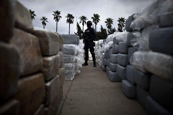 Крупнейшая партия марихуаны изъятая в Мексике. Путешествия