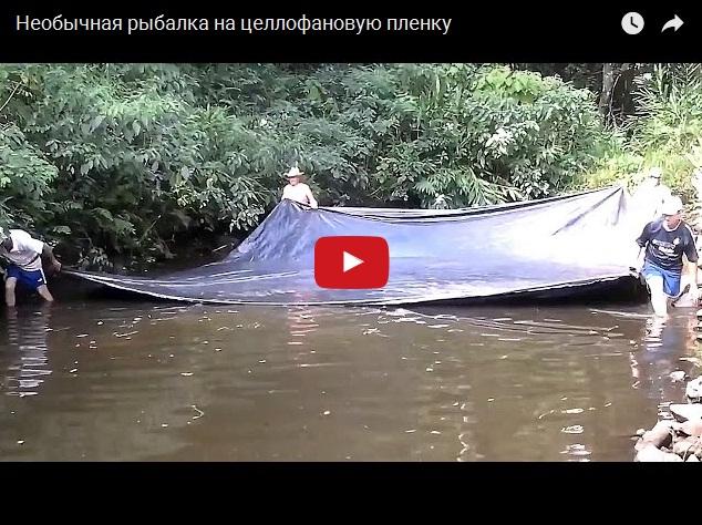 Необычная рыбалка на целлофан