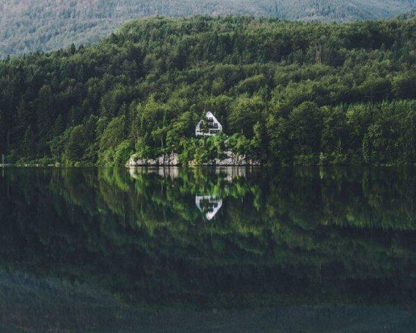 Домики в лесу. Красивые фото