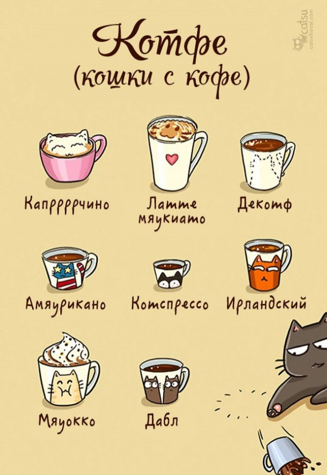 Жизнь с появлением кота. Прикольные комиксы про кошек