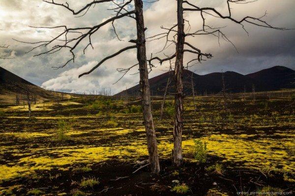 Красивые снимки Камчатки. Путешествия