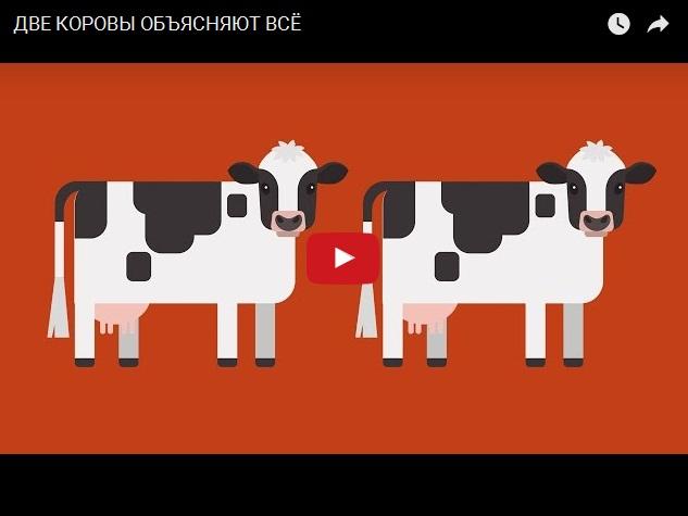 Прикольная инфографика - как объясняют на двух коровах