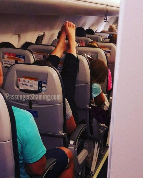 Самые странные пассажиры в самолетах. Смешные картинки