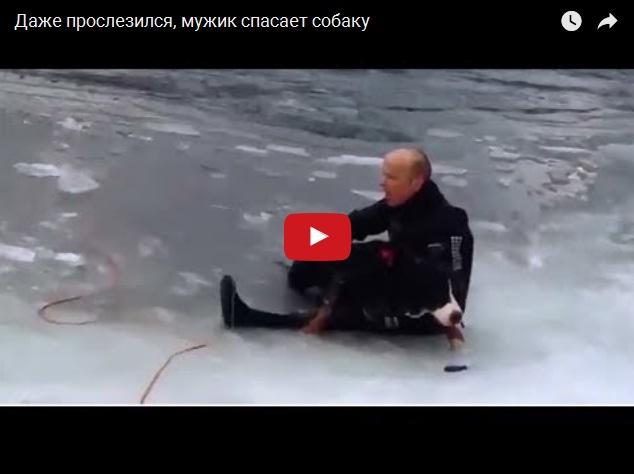 Спасение собаки из ледяной воды