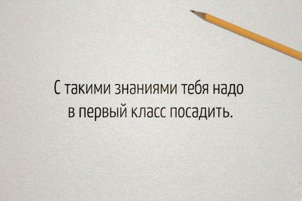 Самые известные цитаты учителей