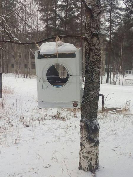 Тем временем в России.... Веселые картинки