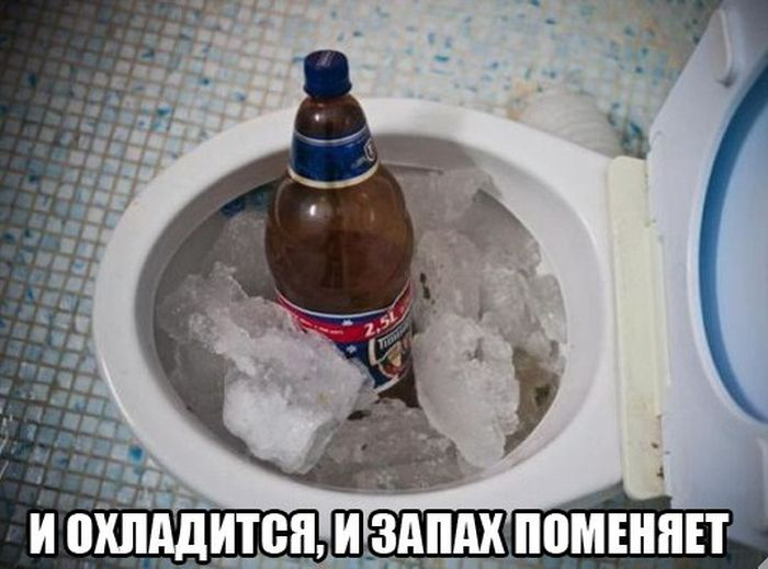 Свежий сборник забавных картинок