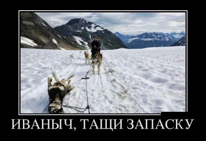 Улетный сборник свежих демотиваторов и приколов