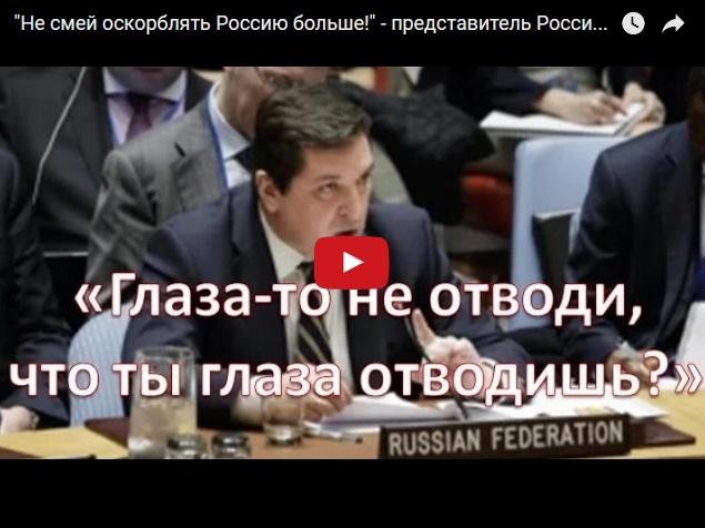 """Наши в ООН: """"Не смей оскорблять Россию больше!"""""""