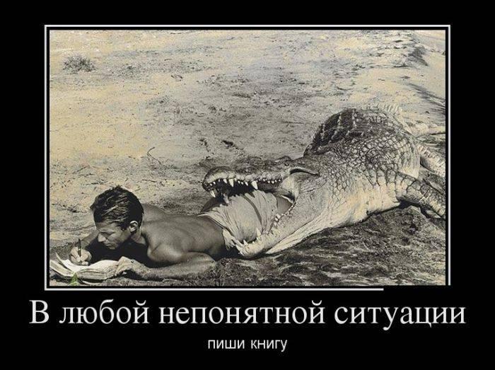 Про величие, запреты и реинкарнацию - русские демотиваторы