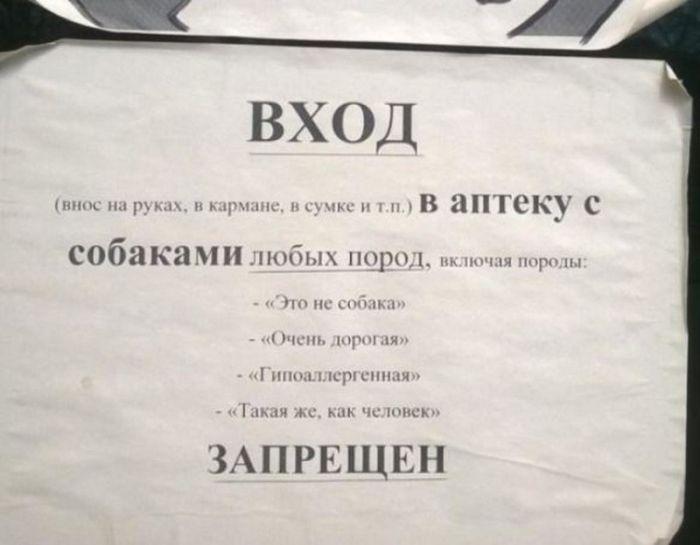 Самые креативные запреты в объявлениях