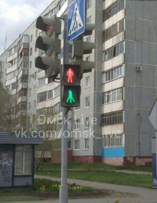 Такое может быть только в России. Прикольные фотки