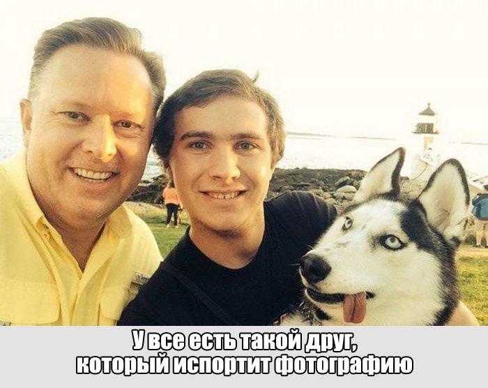 Сборник прикольных картинок №6