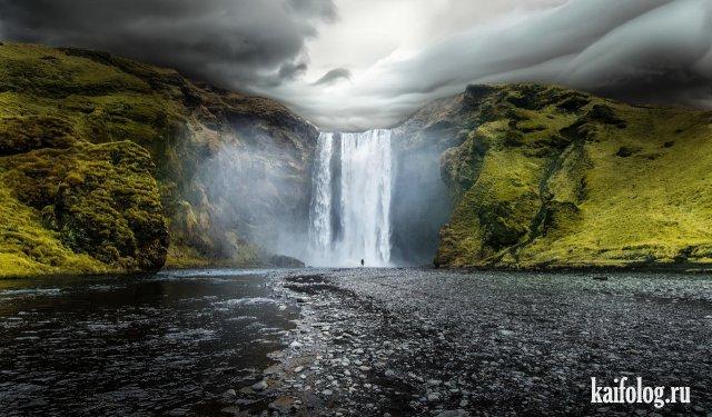 Самые красивые картинки дикой природы