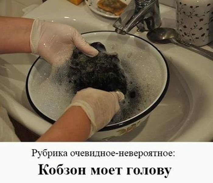 http://xaxa-net.ru/uploads/posts/2017-08/1504067465_svezhie-prikoly_xaxa-net.ru-19.jpg
