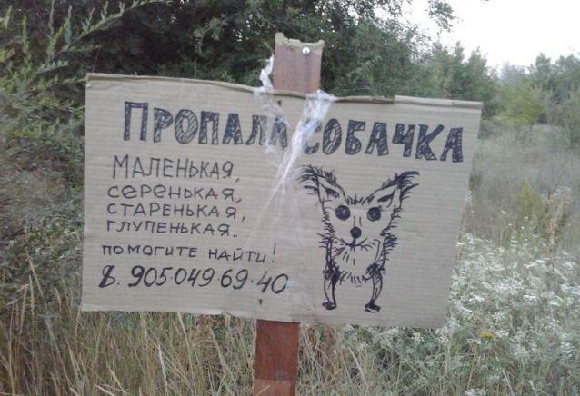 Ржачные объявления о потере животных