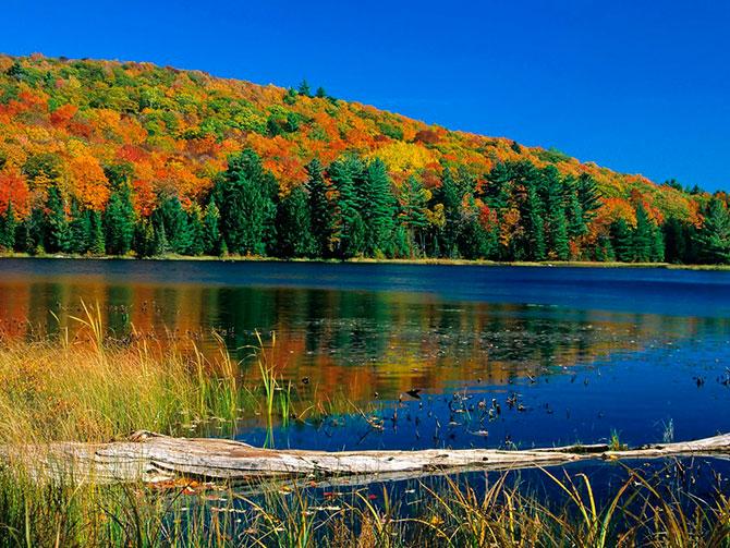 Вот и осень... Красивые фото