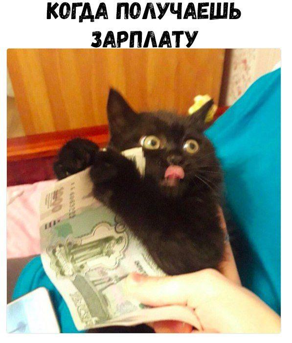 Свежий сборник пятничных фотоприколов