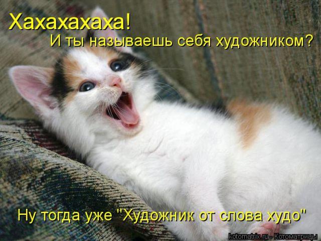 Сборник веселых котоматриц