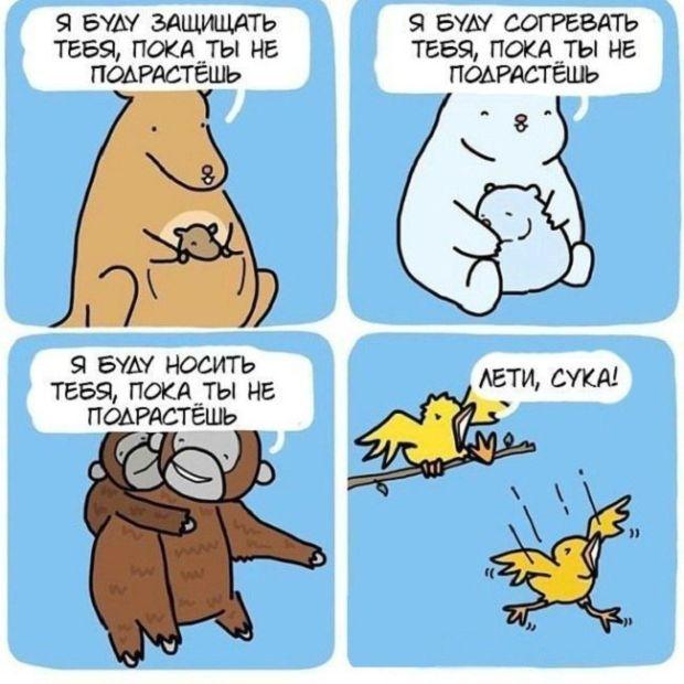 Новые комиксы - подборка рисованных приколов