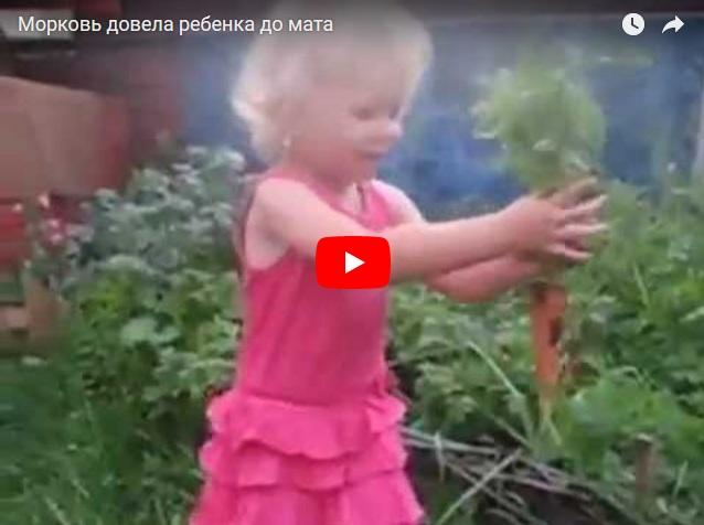 Морковка довела девочку до мата