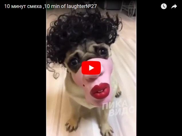 10 минут смеха - сборник ржачных моментов на видео