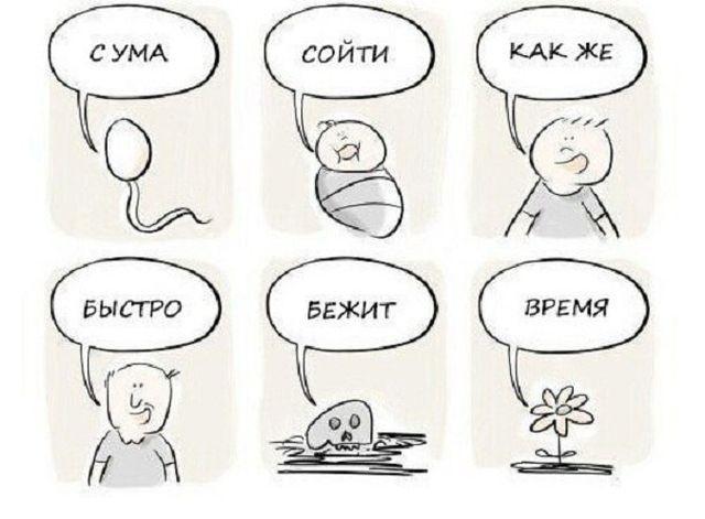 Воскресная подборочка прикольных комиксов