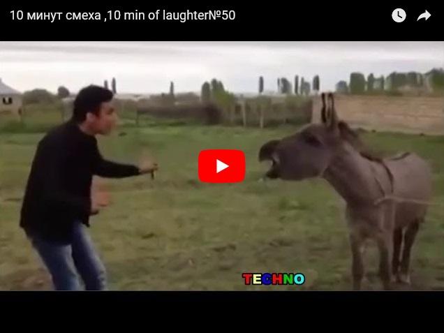 10 минут смеха и приколов - самое смешное видео