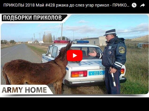 Сборник майских видео приколов от канала Army Home