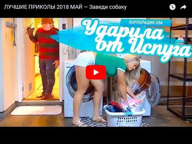 Лучшие видео приколы за май от канала Корпорация зла